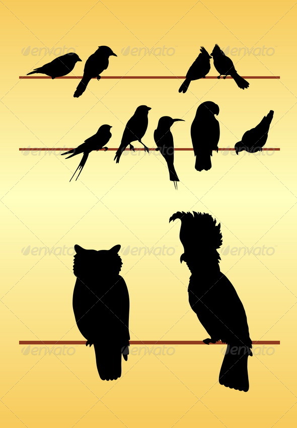 Bird Silhouettes - Animals Characters