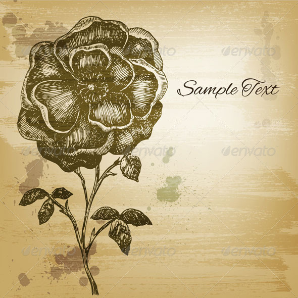 GraphicRiver Vintage Card with a Flower Drawing 5124894
