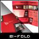 Ultimate Movie/Photography - A4 Bi-Fold Brochure - GraphicRiver Item for Sale