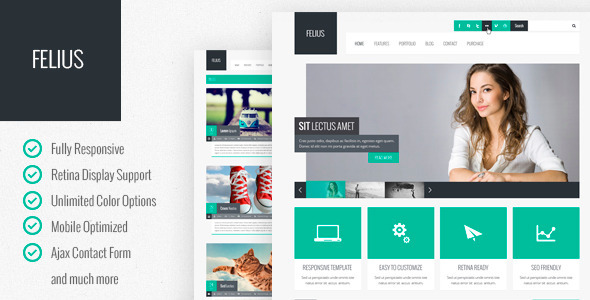 ThemeForest Felius Responsive Multipurpose Template 5135117