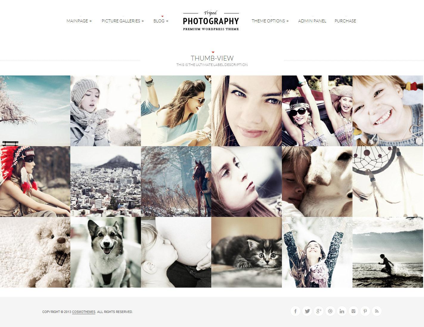 Type photography select 5 option input