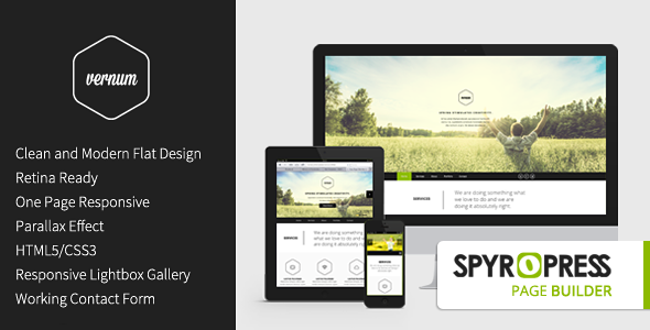 Vernum - Responsive OnePage Parallax WordPress Theme - Portfolio Creative
