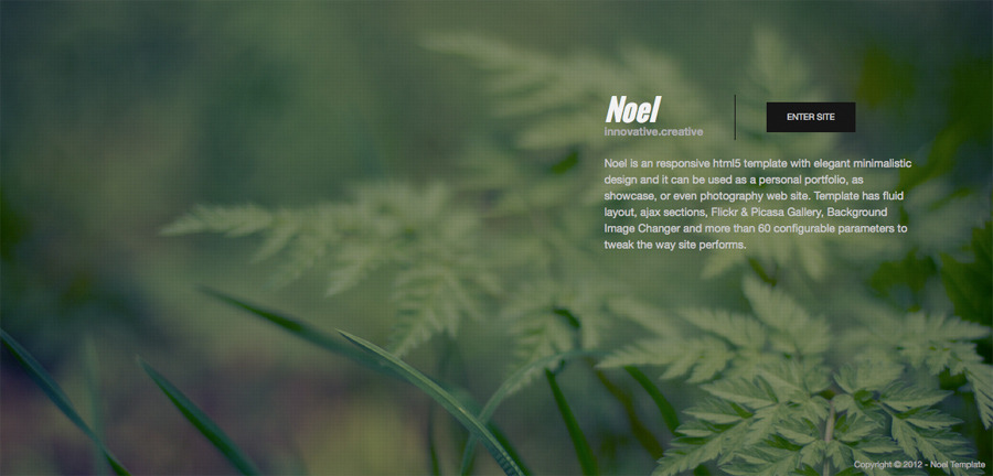 Noel - Onepage AJAX Template - Site Intro