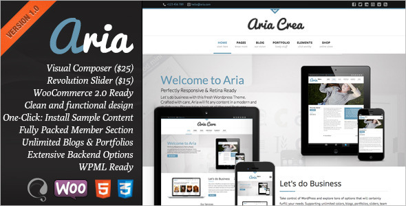 ThemeForest Aria Pure Business Theme 5124079