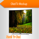 Tv Oled Mockup - GraphicRiver Item for Sale