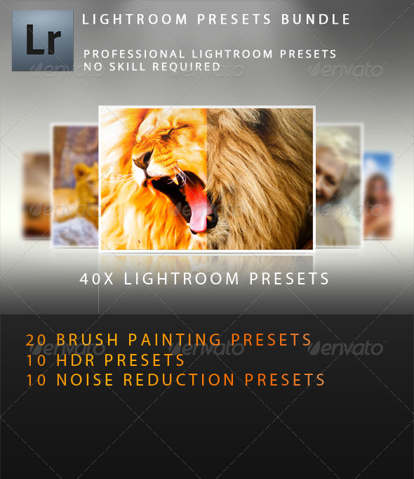 GraphicRiver 40x Premium Lightroom Presets Bundle 5181630