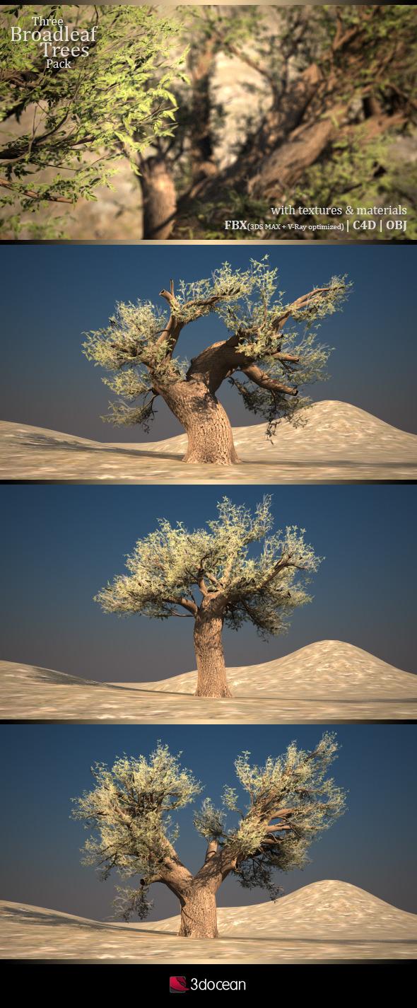 3DOcean Three Broadleaf Trees Pack 5189178