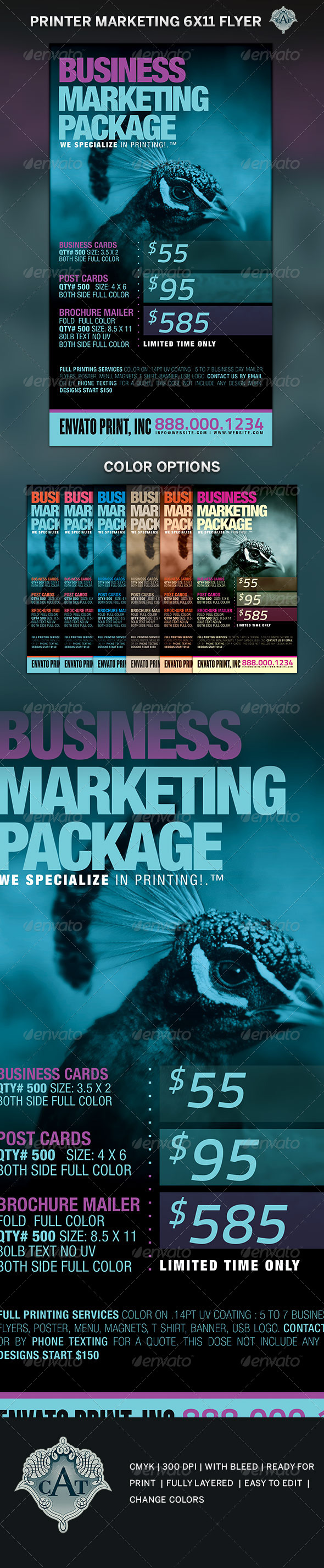 GraphicRiver Printer Marketing Flyer Template 5189583