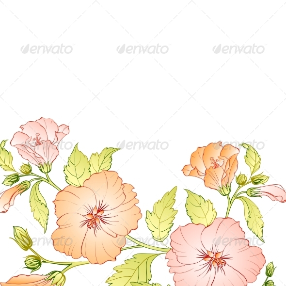 GraphicRiver Hibiscus Flower Background 5190359