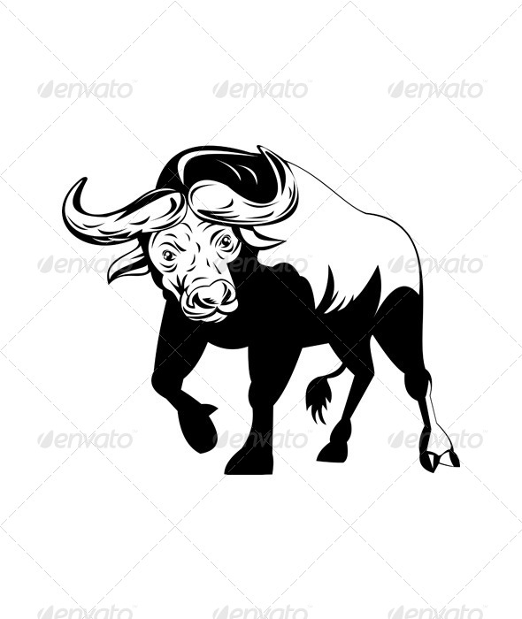 GraphicRiver African Bull Attacking 5191934