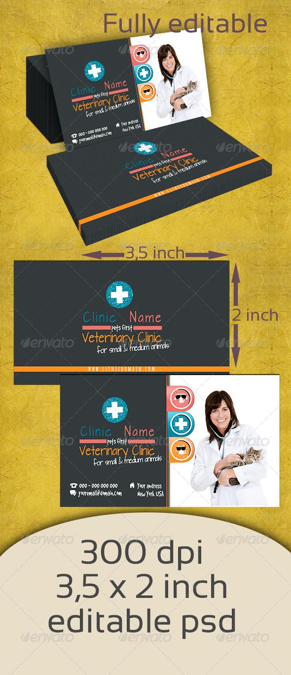 GraphicRiver Veterinary Clinic 5115823