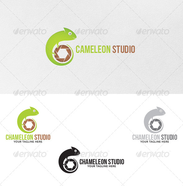 GraphicRiver Chameleon Studio Logo Template 5198649