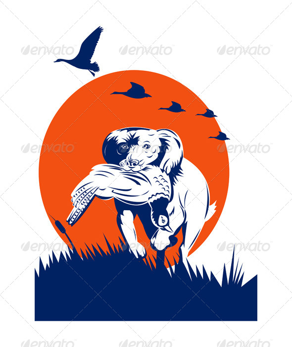 GraphicRiver Bird Dog and Pheasant 5199382