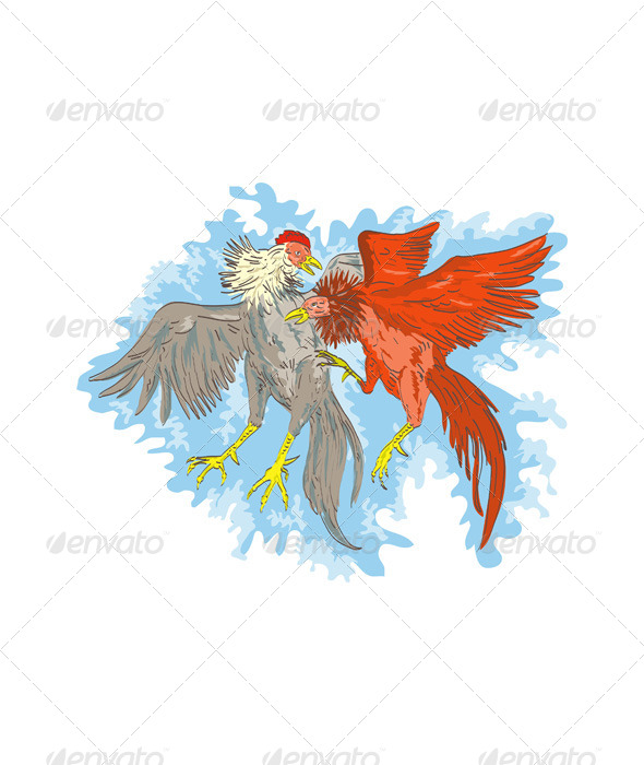 GraphicRiver Fighting Cocks 5199396
