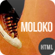 Moloko - Responsive One Page Html5 Template - ThemeForest Item for Sale
