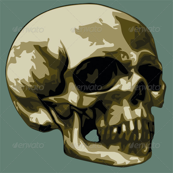 GraphicRiver Skull 5189086