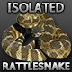 Northern Pacific Rattlesnake - GraphicRiver Item for Sale