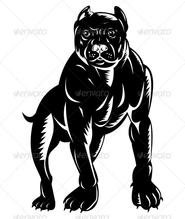 GraphicRiver Pitbull Dog 5208156