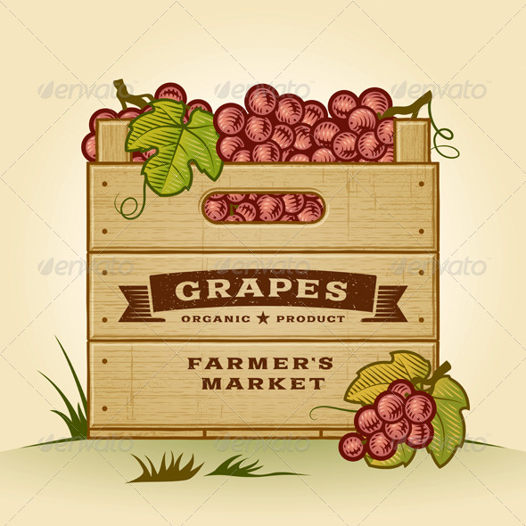 GraphicRiver Retro Crate Of Grapes 5211120