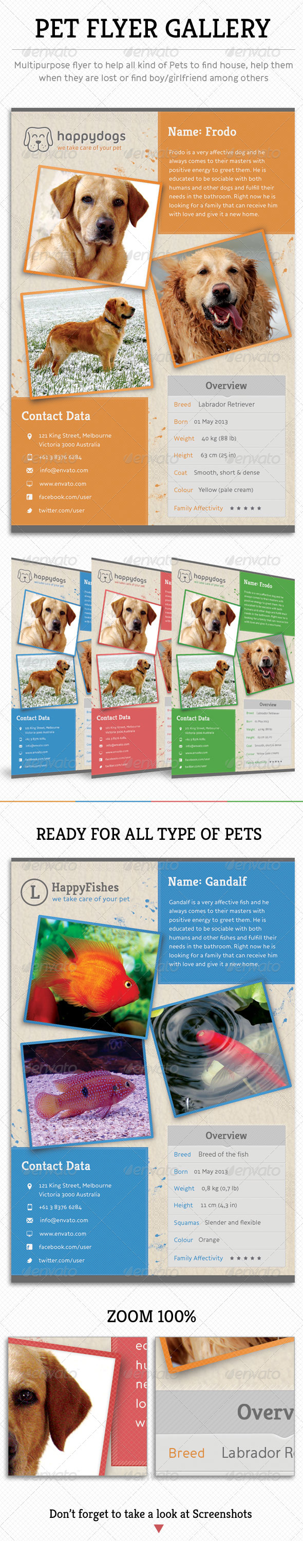 GraphicRiver Pet Flyer Gallery 5217765