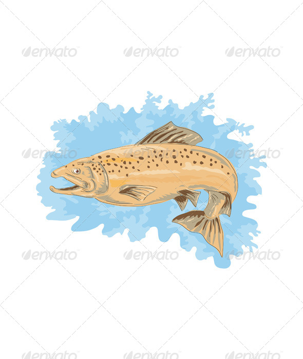 GraphicRiver Brown Trout Fish Jumping Retro 5220468