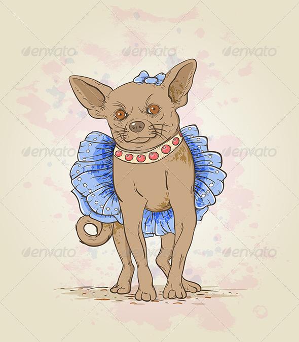 GraphicRiver Small Decorative Dog 5223345