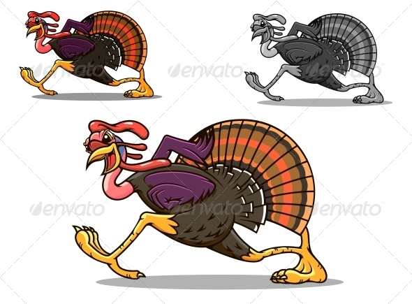Running Turkey Bird - Animals Characters