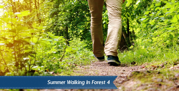 Walking Forest