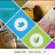Simple Facebook Timeline - GraphicRiver Item for Sale
