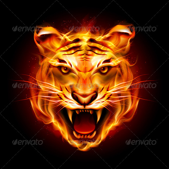 GraphicRiver Head of a Tiger in Flame 5234603