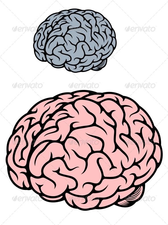 GraphicRiver Human Brain 5237586