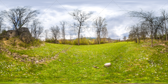 HDRI Tree And Grass Field - 3DOcean Item for Sale