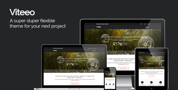 ThemeForest Viteeo Responsive Business Theme 5242150