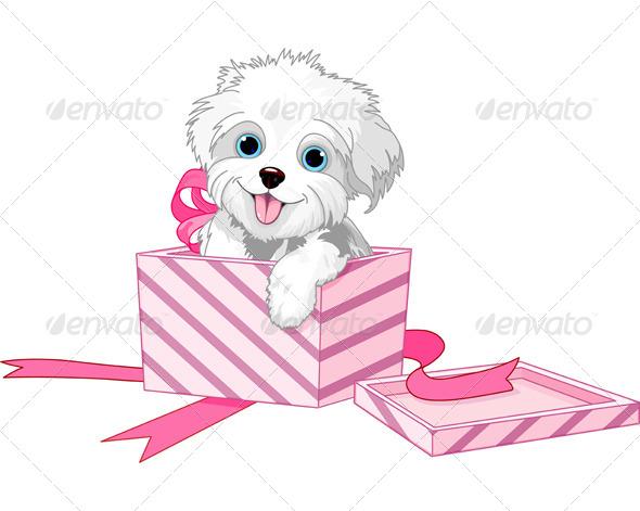 GraphicRiver Dog in Box 5250654