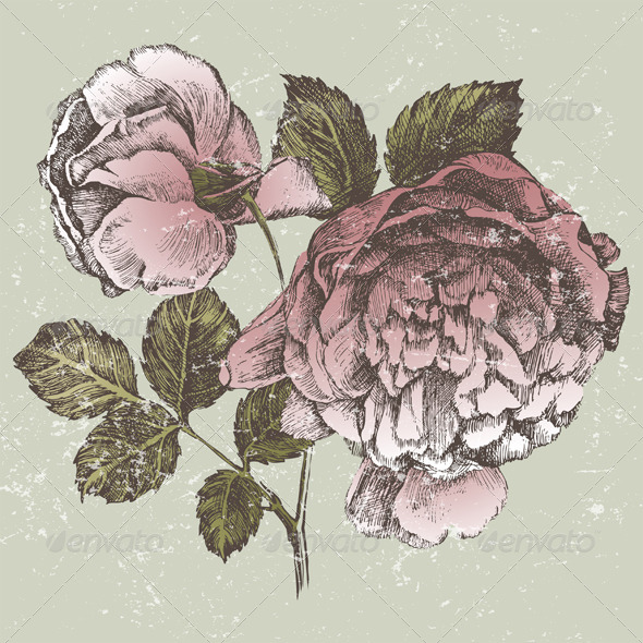 GraphicRiver Retro-Styled Rose Branch 5252369