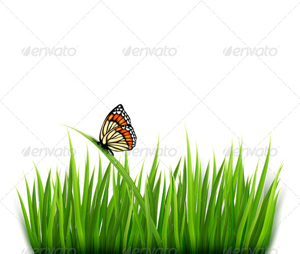 GraphicRiver Nature Background with Green Grass and a Butterfly 5255297