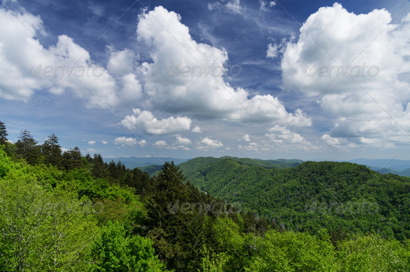 Great Smoky Mountains - Stock Photo - Images