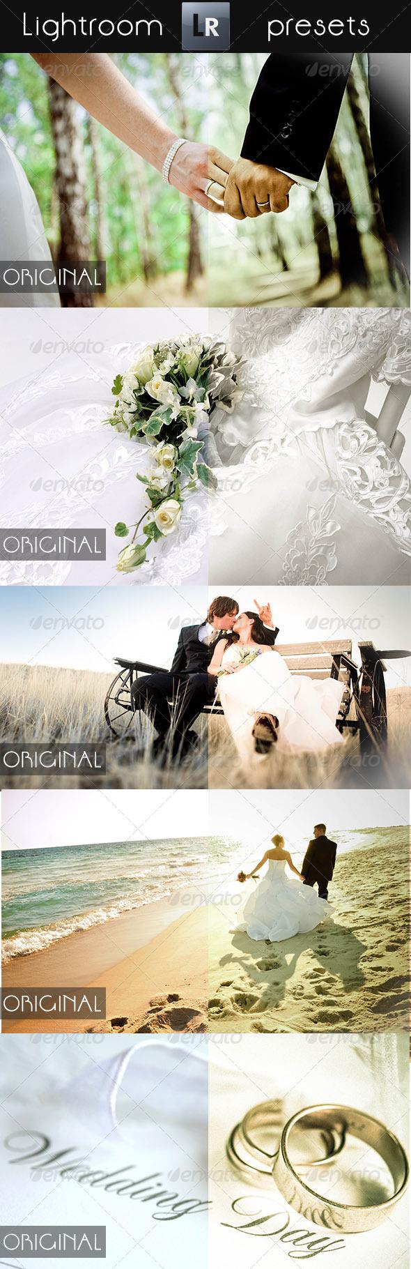 GraphicRiver 10 Wedding Pro Presets 5275378