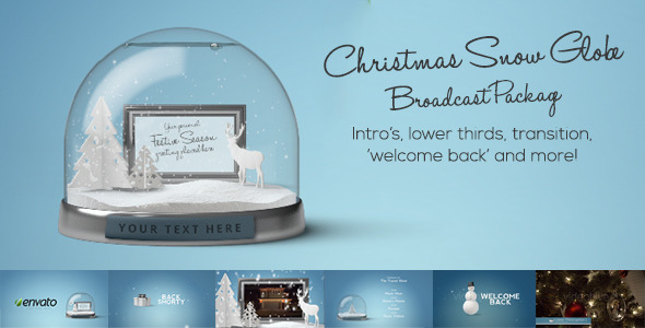 Snow Globe Christmas Package