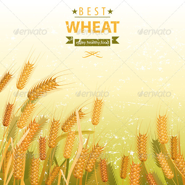 GraphicRiver Wheat Field 5278208