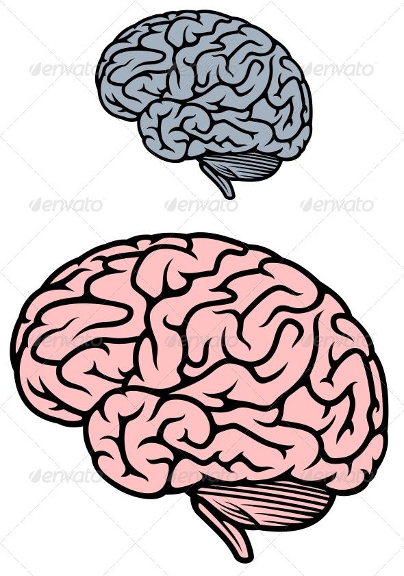GraphicRiver Human Brain 5284949