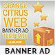 Orange Citrus Web Banner - GraphicRiver Item for Sale