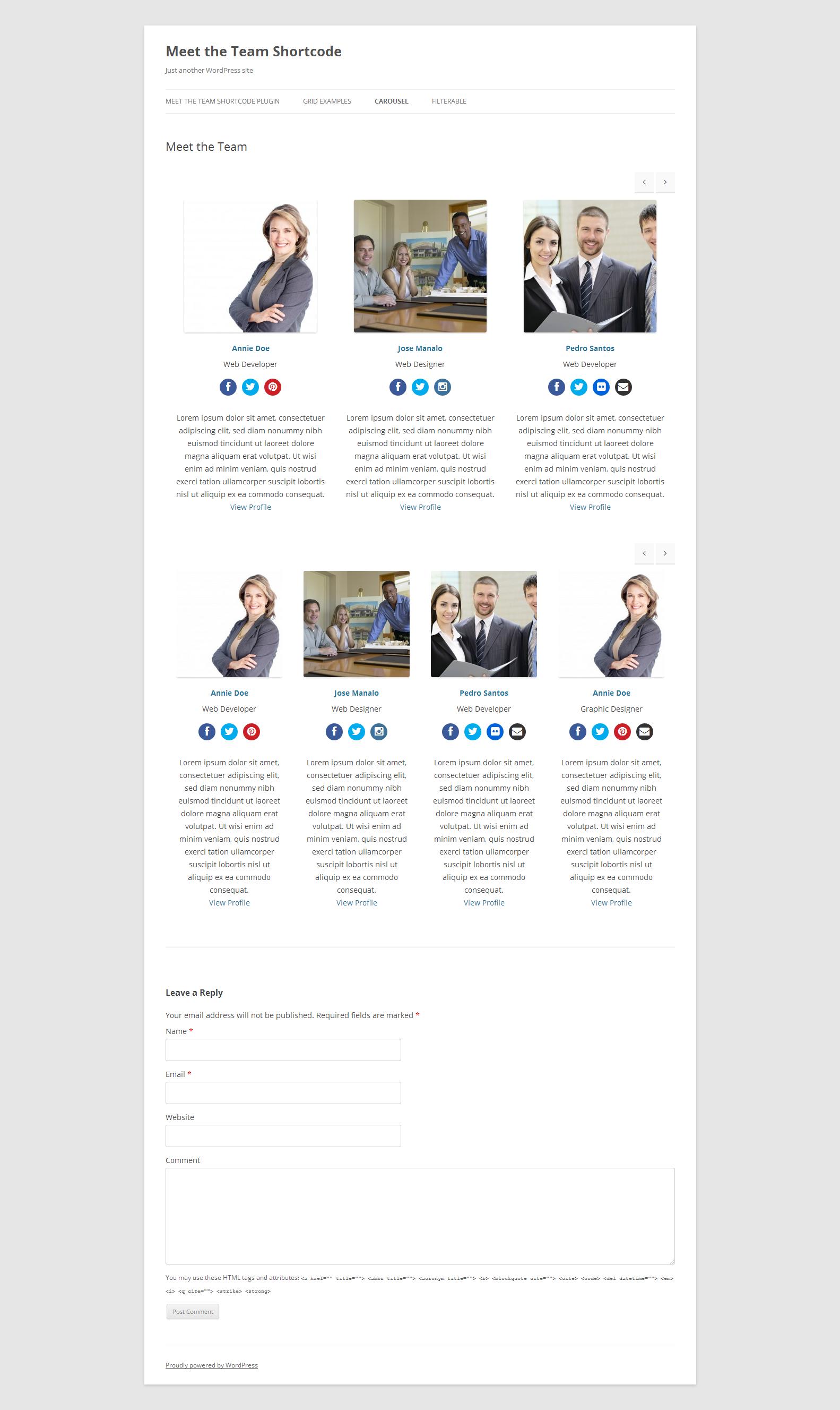 wordpress team member plugin