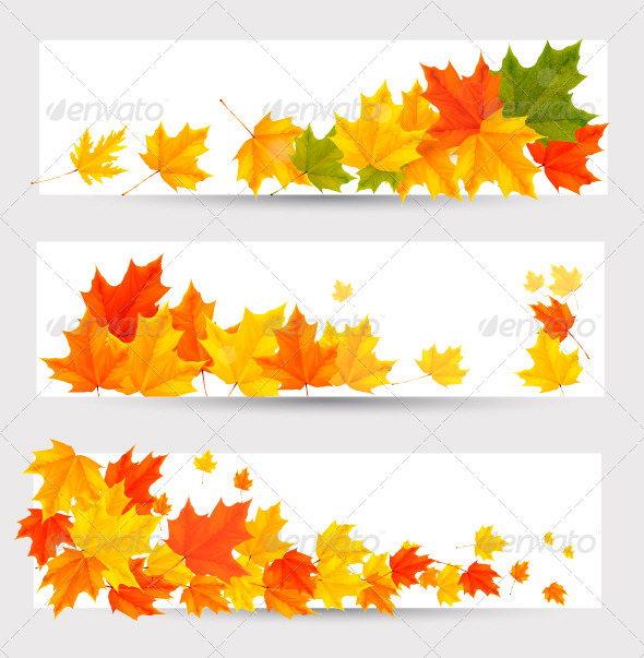 GraphicRiver Set of Autumn Banners with Colorful Leaves 5296249
