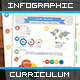 Infographic Curriculum Vitae Resume Elements - GraphicRiver Item for Sale
