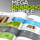 FlySpa Corporate Identity Mega Branding Pack