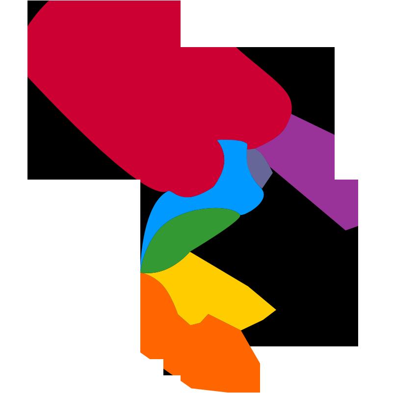 star bird