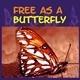 Light On Petals - AudioJungle Item for Sale