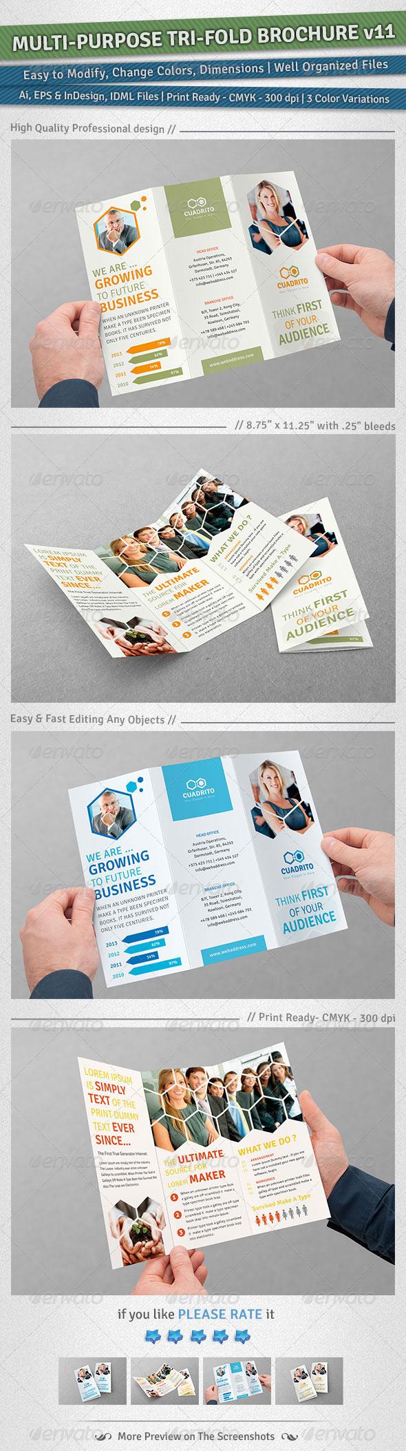 GraphicRiver Multi-purpose Tri-Fold Brochure Volume 11 5258776