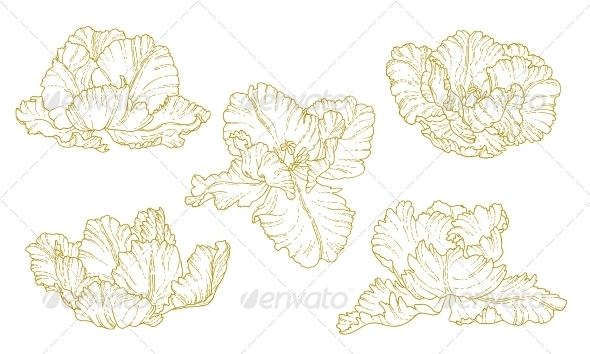 GraphicRiver Set of One-Colored Outlined Tulips 5314963